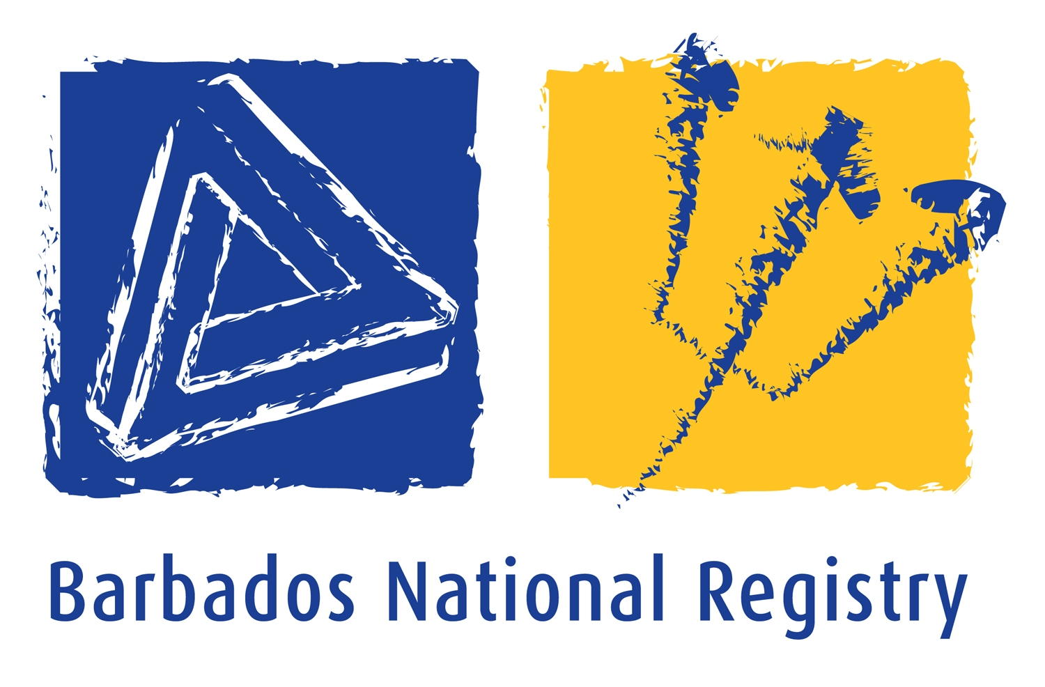 The Barbados National Registry for Non-Communicable Diseases